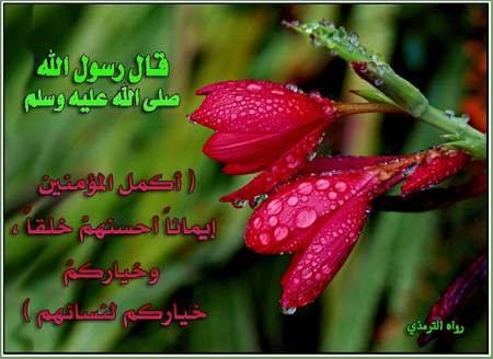 •.¸.•°° بين أنات الزوجات وآهات saudi_1.jpg