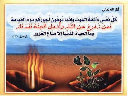 تم التجميع من اسلام ويب