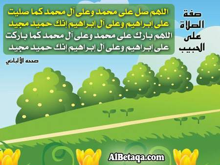۩۞ فضل التمسك بالسنة وأهميته في زمن الفتن والشدائد ۞۩ saudi_naby-salah-3-n
