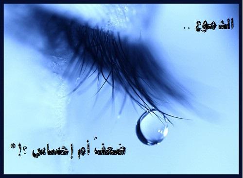 ضعف أم إحساس qatarat_-8f0379ba594